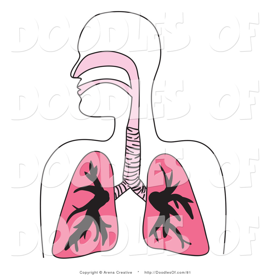 respiratory system clip art u2013 clipart free download
